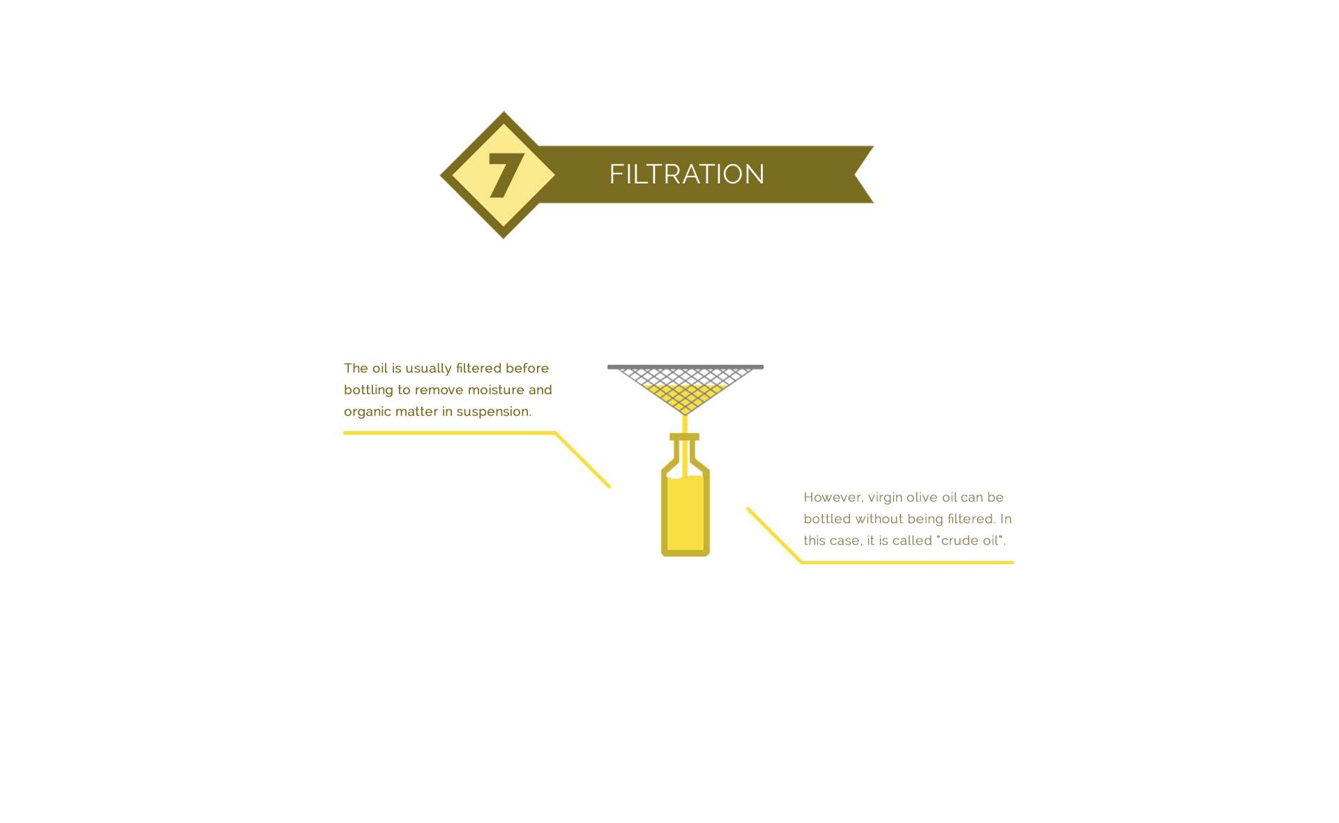 Filtering olive oil