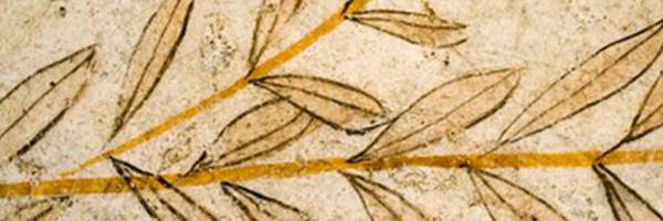 histoire de l'Huile d'Olive d'Espagne