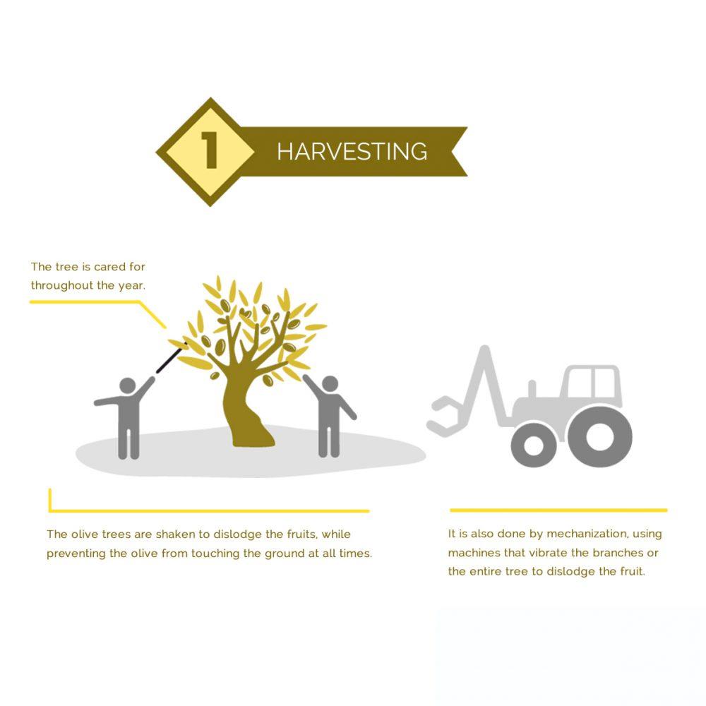 02 – Manufacturing process