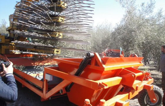Innovations and new technologies in the olive industry – MECAOLIVAR